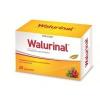 Walmark walurinal aranyvesszővel 60db 60 db