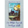 Wanderer János WANDERER JÁNOS - AZ ÕSFÁK FIAINAK LOMBJAI ALATT