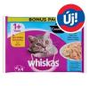 Whiskas 1+ Halas Válogatás teljes értékű eledel felnőtt macskák számára aszpikban 4 x 85 g