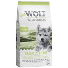 Wolf of Wilderness 1kg Little Wolf of Wilderness Junior - Green Fields - bárány száraz kölyökkutyatáp kutyaeledel