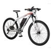 ZTECH Elektromos Kerékpár Alpan ZT-82 Li-Ion Akkumulátor-Aluváz-250W